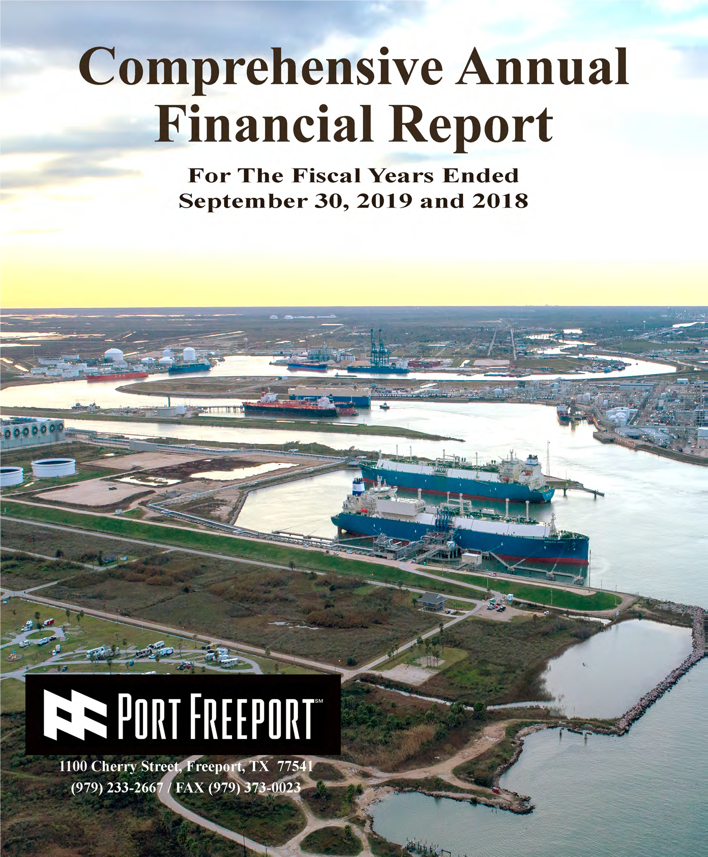 FY19 Financial report image